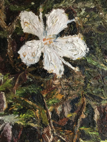 Painting of flower by Magdalen College School A-level pupil