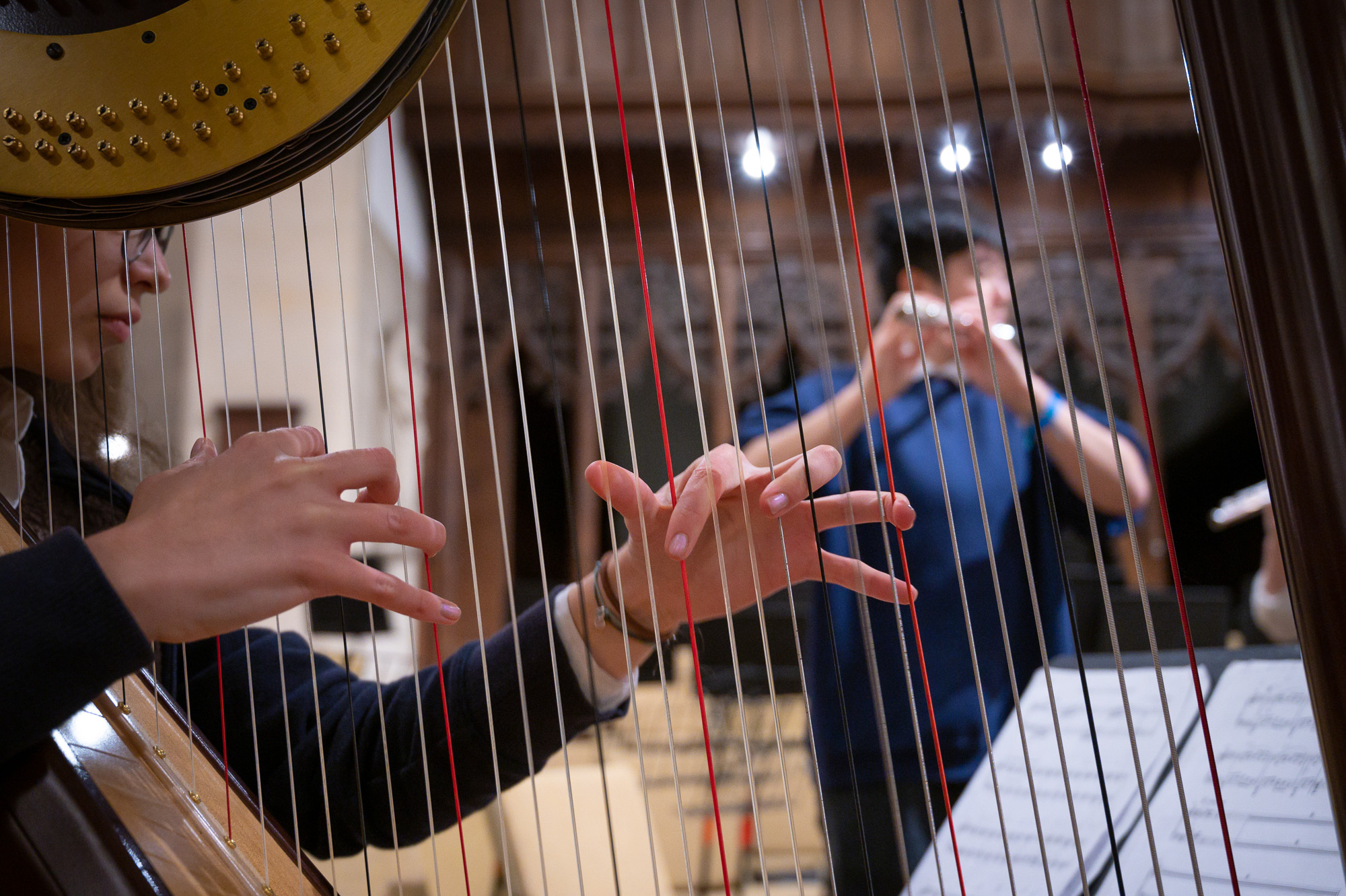 Magdalen College School pupil playing the harp